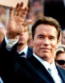 Arnold Schwarzenegger grafika